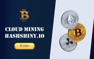 How to make money on Hashshiny